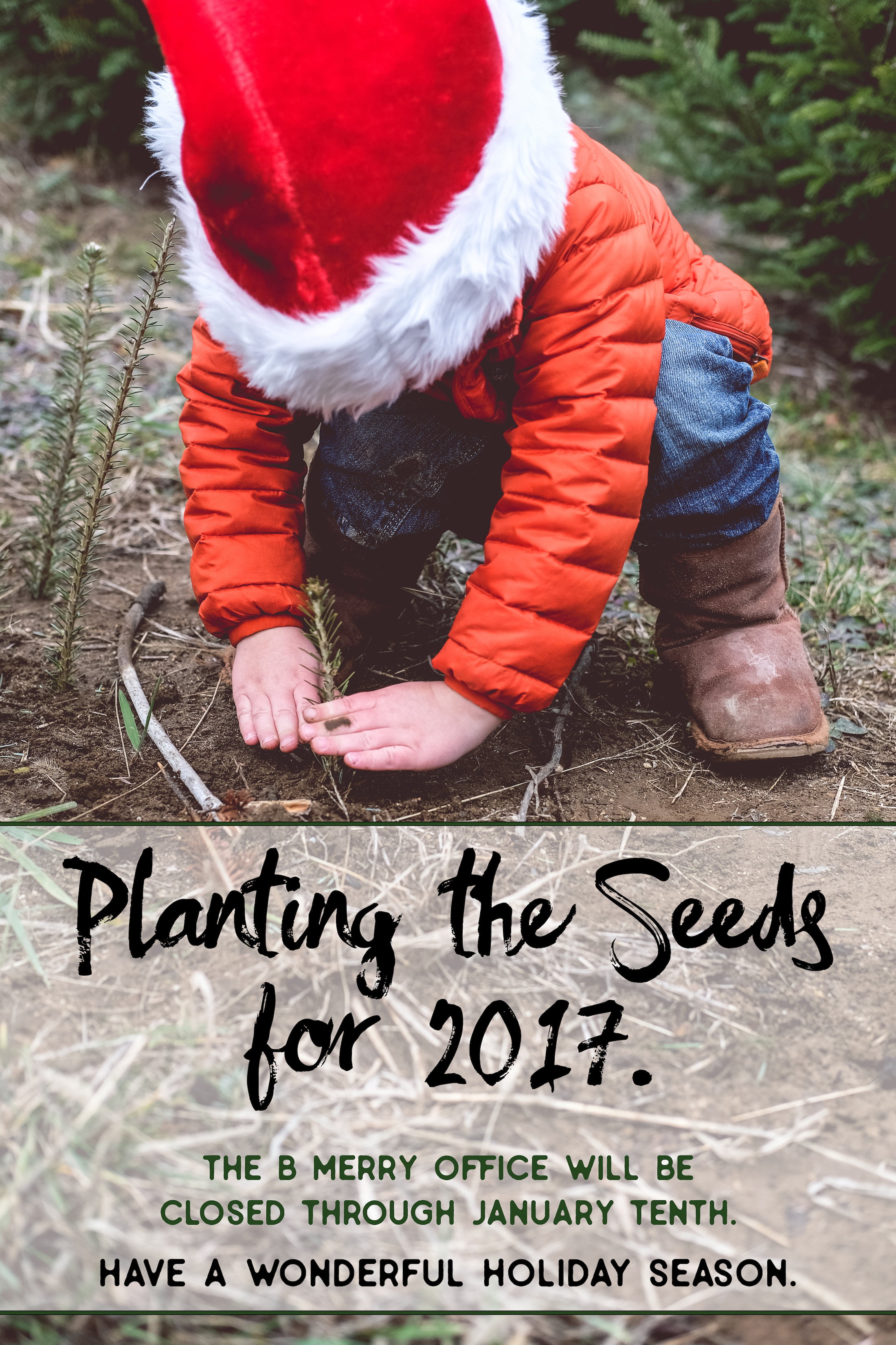 planting-the-seeds